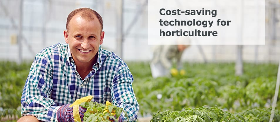 Nolting wood firing technology for horticulture